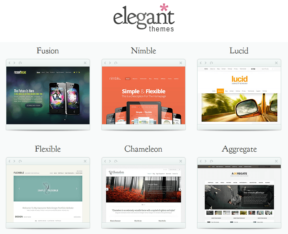Elegant themes for wordpress